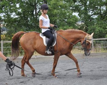 rider on the lunge