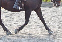 Heel-first landing in hoof boots