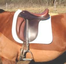dressage saddles: stirrup bar position
