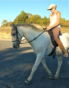 Dressage training tips: yeilding the outside rein to check straightness