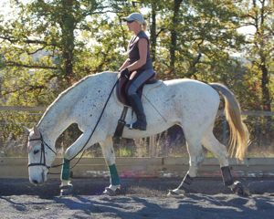 dressage training tips: frequent rest periods on a loose rein