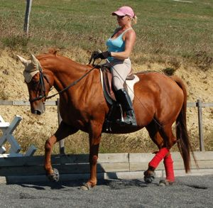 The Whole Horse newsletter, Issue #006 -- The Inside Out Philosophy