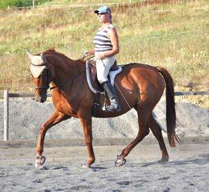 correct riding