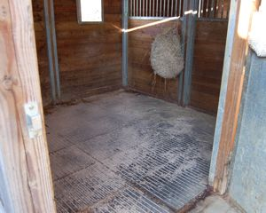 fieldguard horse rubber mats in stable, no bedding