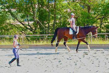 training the rider lunge work