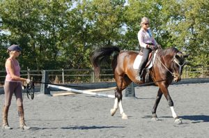 Pilates for riders: lunge lessons