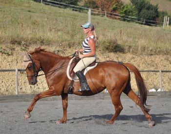 posture riding engagement canter