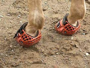 renegade hoof boots