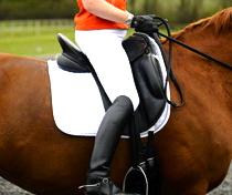 saddle too far forwards
