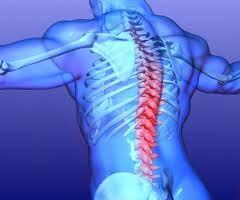 rider health spine