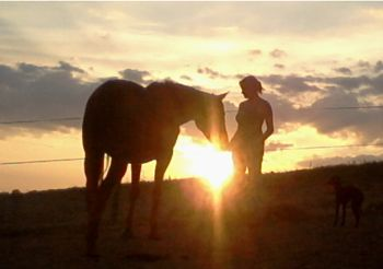 sunset horse and person