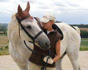 stiff horse trust