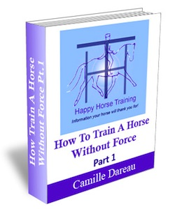 How to lunge a horse well is fully explained in 'How To Train A Horse Without Force'