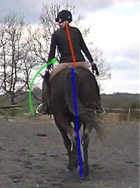 ultimate dressage solution: postural straightness