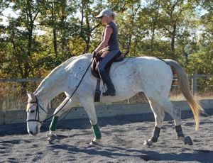 working after dummy foal syndrome