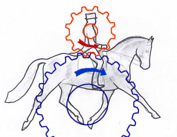 horse and rider cogs dynamic
