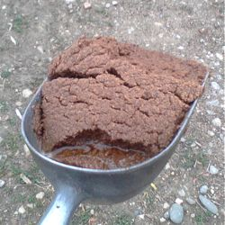 copra coconut meal for horses