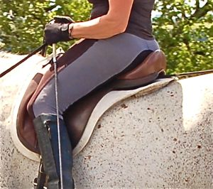 dressage saddles: connecting horse and rider