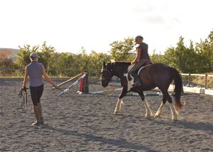First ridden work on the lunge maintaing the continuity of training