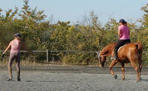 A well trained lunge horse is indispensible for good teaching on the lunge