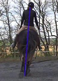 ultimate dressage solution: postural straightness